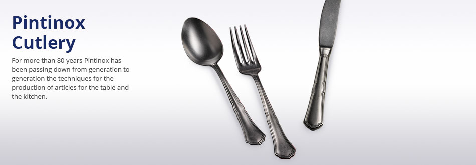 Pintinox Cutlery Category Banner