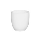 Alchemy White Egg Cups 7.1cl