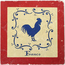 Printed Marble Display Tile 30x30cm W/Chicken Design
