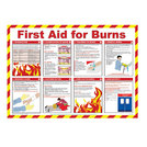 First Aid For Burns Poster 42x59cm