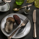 Settecento Bronze Alchemy Table Spoon