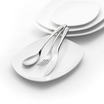 Swing Dessert Spoon 18/10 Stainless Steel